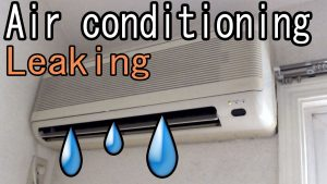 AC Leakage Repair